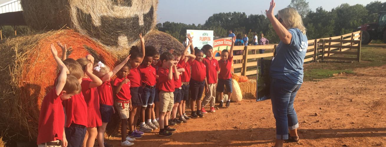 children having activity outside